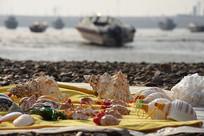 海岸港口船只海螺贝壳装饰品
