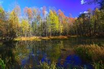 河流彩林灿烂秋色