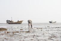 落潮后男人在海滩上捡海螺