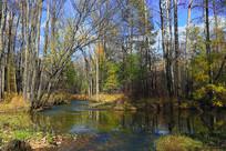 小溪彩林秋色