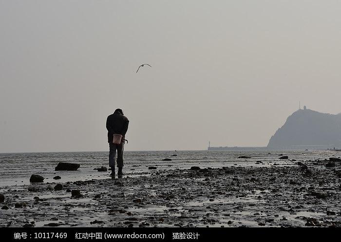 冬季海滩拿耙子捡蛤蜊的人图片