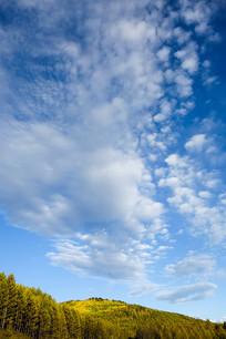 白云下的秋色