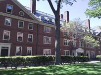 哈佛校园的教学楼