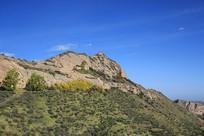 蓝天绿树山峰