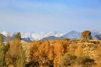 乡村雪山美景