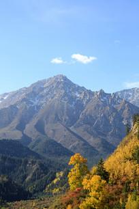 远山和森林