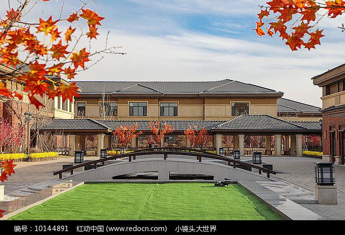 枫叶下的中式庭院图片