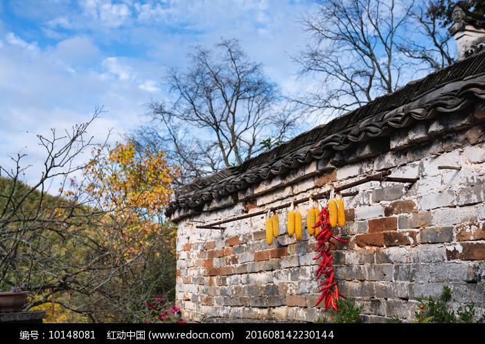 山村之秋图片