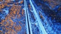 冰雪森林之路