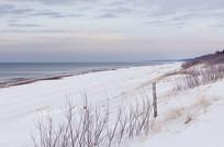 冬季荒地野外