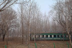 林间绿皮火车