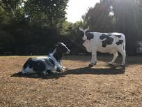 站着和卧着的牛雕塑