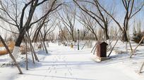 铺满雪的林间小路