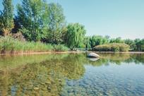 公园景观湖
