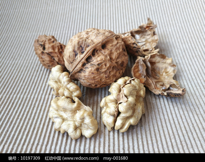 静物核桃米图片
