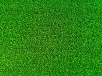 仿真草坪纹理背景