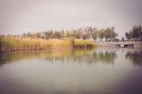 景观河沿岸风光