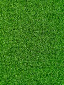 人造草皮仿真绿草