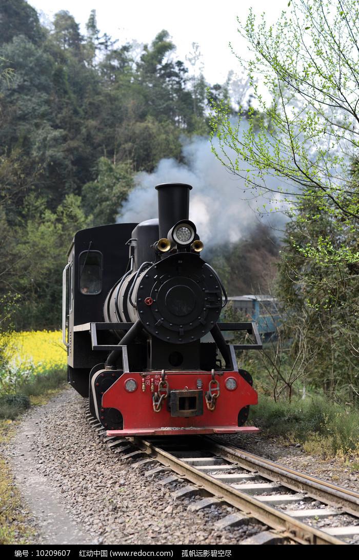 迎面驶来的蒸汽窄轨小火车图片