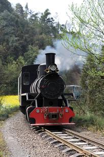 迎面驶来的蒸汽窄轨小火车