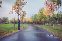 雨天的公园