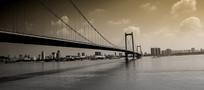 武汉鹦鹉洲长江大桥