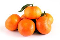 白底背景柑橘杂交品种默科特