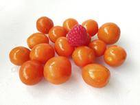 桑葚小番茄