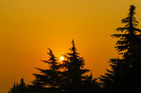 夕阳西下晚霞染红西边