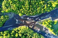 航拍绿色林海河流丛林