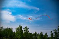 飞上天风筝