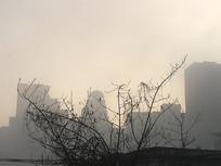 晨雾里的城市剪影