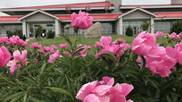 新疆那拉提机场候机楼