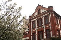 樱花图书馆