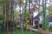 南浔古镇水乡传统建筑