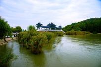 太湖仙岛芦苇与桥梁