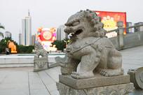 茂名文化广场图书馆门前小石狮