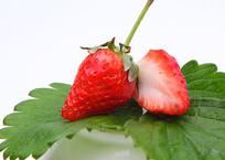多种鲜草莓