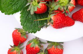 红色甜宝草莓