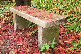 莫干山石凳落叶,园林风光