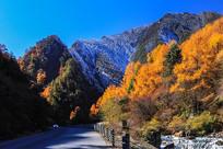 从冬天开往秋天