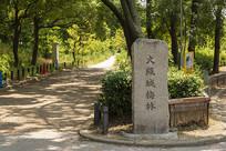 日本大阪城梅林