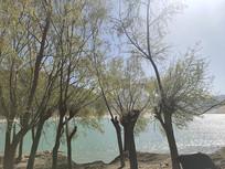 林芝湖泊风景