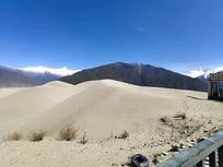 西藏林芝-佛掌沙丘