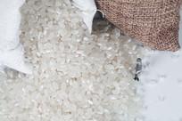 香梗米图片