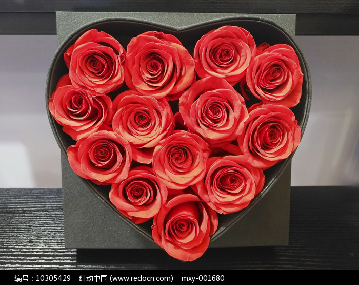 爱情玫瑰花心图片
