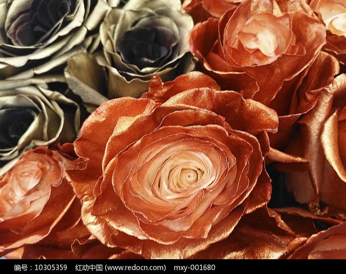 金黄玫瑰图片