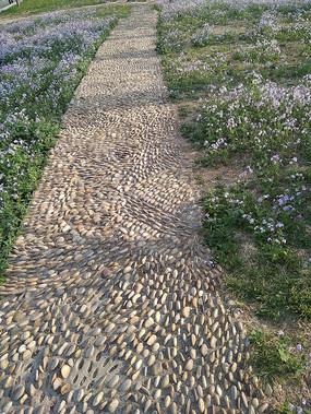花丛中的鹅卵石小径