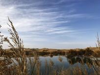 塔里木河畔