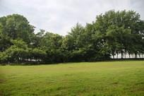 绿地公园户外